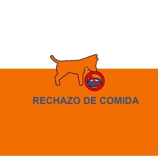 Comandos y ordenes de adiestramiento canino (2)