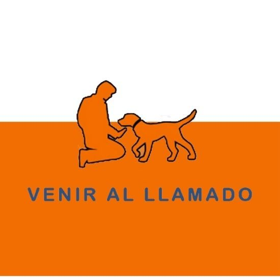 Comandos y ordenes de adiestramiento canino (5)