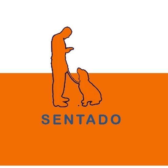 Comandos y ordenes de adiestramiento canino (8)
